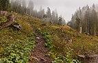 Bergtocht van Tschiertschen (1350 meter) via Ruchtobel naar Löser (1680 meter) 010.jpg