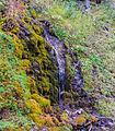 Bergtocht van Vens naar Bettex in Valle d'Aosta (Italië). Watervalletje naast het bergpad 01.jpg