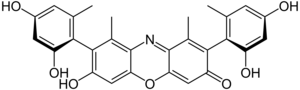 Orcein - Image: Beta hydroxyorcein