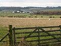 Between Annfield and Branxton farms - geograph.org.uk - 89321.jpg
