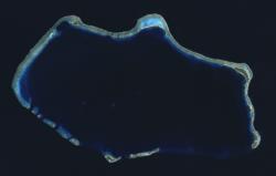 Bikini Atoll 2001-01-14, Landsat 7 ETM+, bands 3-2-1-8.png