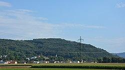 Bisamberg aus der Ferne.jpg