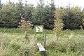 Blackdog Community Woodland - geograph.org.uk - 1496792.jpg