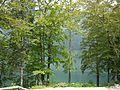 Bled (27314021404).jpg
