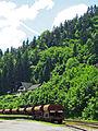 Bled - Slovenia (13435188895).jpg