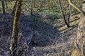 """Blick in die Doline """"Hirschbreischüssel"""" bei Tiefenbach.jpg"""