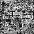 Bloeiende Betuwe, kinderen spelen onder de bloesems, Bestanddeelnr 910-3071.jpg