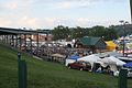 Blue Ridge Music Center festival.jpg