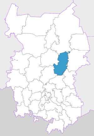 Bolsherechensky District