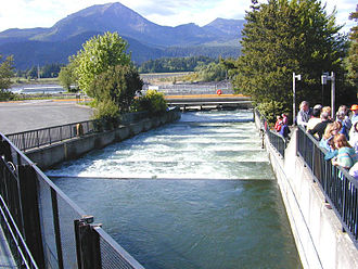 Fish ladder - Pool-and-weir fish ladder at Bonneville Dam on the Columbia River