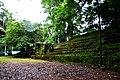 Botanic garden limbe97.jpg