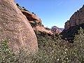 Boynton Canyon Trail, Sedona, Arizona - panoramio (76).jpg