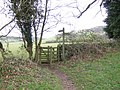 Branching footpaths - geograph.org.uk - 318065.jpg