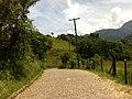 Brasil rural - panoramio (5).jpg