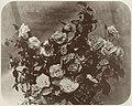 Braun, Adolphe - Rosen (Zeno Fotografie).jpg