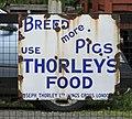 Breed More Pigs (35562326383).jpg