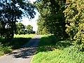 Bridleway, Hatfield Farm, Etchilhampton - geograph.org.uk - 523439.jpg