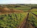 Bridleway near Tidswell - geograph.org.uk - 1075287.jpg