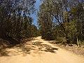 Brooman NSW 2538, Australia - panoramio (12).jpg