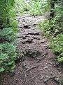 Bruce Trail (6118588792).jpg