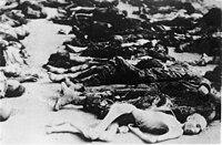 Bodies of the Buchenwald prisoners, April 1945