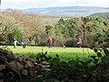Budleigh Salterton golf course - geograph.org.uk - 1074704.jpg
