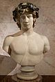 Bust of Antinous Hermitage Museum.JPG