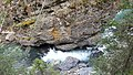 By ovedc - Johnston Canyon - 02.jpg