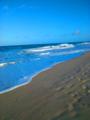 Céu e mar de Jericoacoara.png