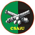 CSAiU oznk rozp (2017) mundur w.jpg