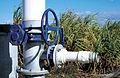 CSIRO ScienceImage 4071 Check valve to control the flow of irrigation water to sugar cane crop at Brandon near Ayr in the Burdekin Irrigation Area SE of Townsville QLD.jpg