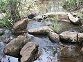 Cachoeira de Salto Liso, Pedro II, Piauí, Brasil 9.JPG