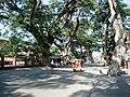 Calle Rizal ZC.JPG
