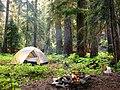 Campfire and tent. (87dd09819ec94a8f930251cc31e2eef9).JPG