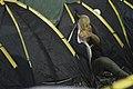 Camping (8423947828).jpg