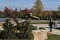 Campus Fall 2013 105 (10291969806).jpg