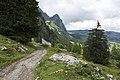 Canton de Schwytz - panoramio (69).jpg