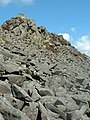 Carningli scree slope - geograph.org.uk - 394198.jpg