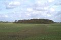 Carr Heys Plantation - geograph.org.uk - 148092.jpg