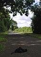 Carr Lane, Willerby - geograph.org.uk - 511144.jpg