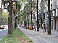 Carril Bici - panoramio.jpg