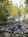 Catoctin Mountain Park-15 (4009841705).jpg