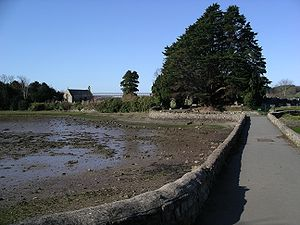 Church Island (Menai Strait) - Church Island and Causeway