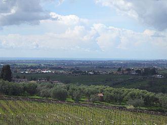 Albano Laziale - Countryside outside Albano.