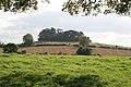 Cedar Hill - geograph.org.uk - 999406.jpg