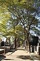 Cemitério da Quarta Parada (interior 5).jpg