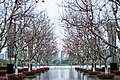 Century Park Shanghai.jpg