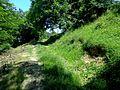 Cetatea dacică de la Tilişca, drum acces.jpg