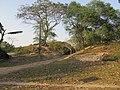 Chandraketugarh Mound - Berachampa 2012-02-24 2502.JPG