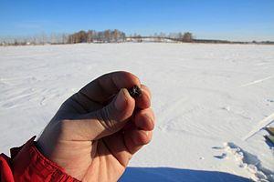 Chelyabinsk meteorite - Image: Chebarkul meteorite sample